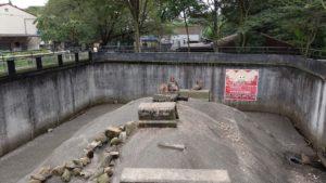 宇都宮動物園の猿